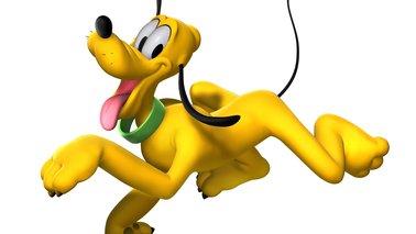 Test des nouveaux m diators niglo naturals en bois et en corne le blog qui gratte - Mickey et plutot ...